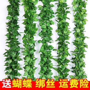 仿真藤条假花藤蔓水管道装饰花藤绿植吊顶树叶塑料葡萄叶绿叶缠绕