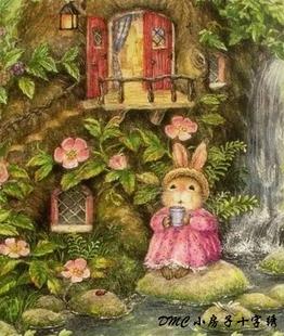 小房子十字绣 法国DMC套件-彼得兔-等待 后花园 可爱呆萌