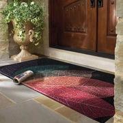 进门地垫入户门大门口厨房丝圈蹭脚垫子地毯家用门厅入户入门门垫