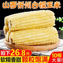 山西忻州白糯玉米10根装速冻甜黏玉米棒子真空粘嫩苞米粒新鲜蔬菜