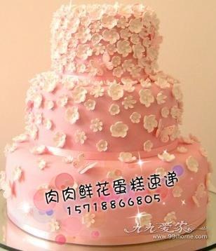 北京生日蛋糕配送 翻糖婚礼蛋糕速递 创意个性蛋糕定做 彩色三层