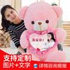 泰迪熊熊猫公仔抱抱熊女孩毛绒玩具大号布娃娃可爱送女友生日礼物